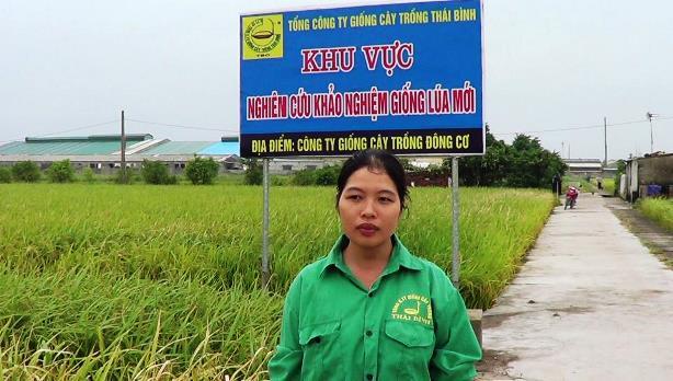 may-cay-HAMCO-Thai-Binh-5