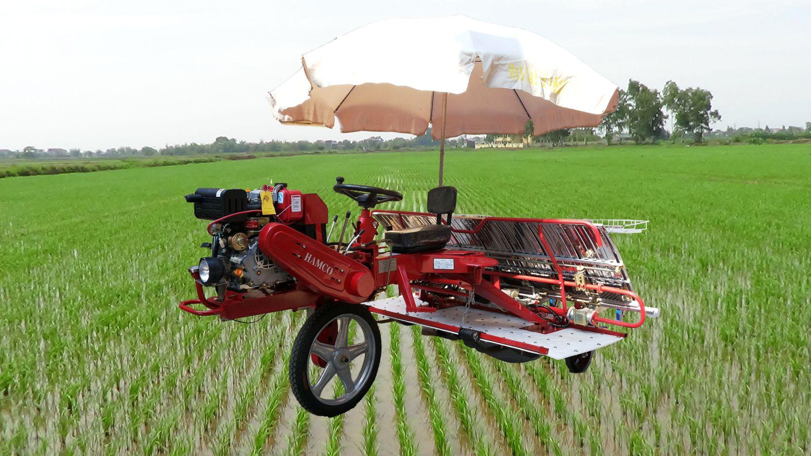 may-cay-lua-hamco-model-2z-8238bg-e-d